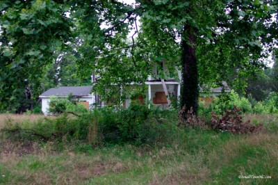 Dilapidated and overgrown, the home's glory days were long past.